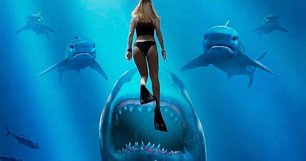 จับเพื่อมาทดลอง ทะเลน้ำลึกสีน้ำเงินของปี 1999 คุณสมบัติของเรนนี ฮาร์ลิน